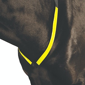 Roma Reflective Breast Plate - Yellow
