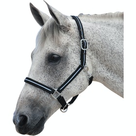 Roma Stylish Reflective Head Collar - Black