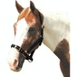 Roma Adjustable Head Collar