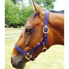 JHL Padded Head Collar - Navy