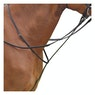 Kincade Standing Martingales