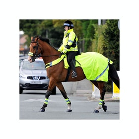 Equisafety Polite Wraparound Reflective Exercise Sheet - Yellow