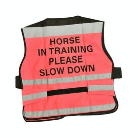 Equisafety 'Horse in Training' Air Reflective Waistcoat - Pink