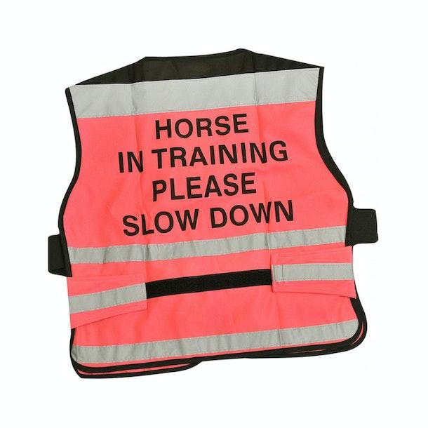 Equisafety 'Horse in Training' Air Reflektierende Weste