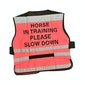 Equisafety 'Horse in Training' Air Reflective Waistcoat
