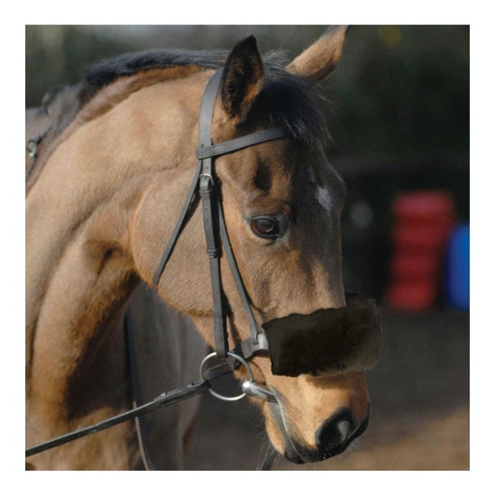 Griffin NuuMed Luxury Wool Noseband Cover Zaumzeug-Polster