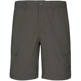 Shorts pour la Marche North Face Horizon Cargo - Asphalt Grey