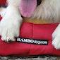 Cama para Cães Rambo Deluxe