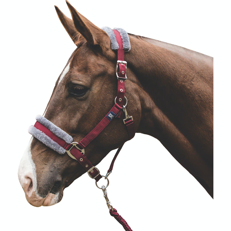 Elico Matterdale Rainbow  Foal Adjustable Headcollar Halter /& Leadrope FREE P/&P