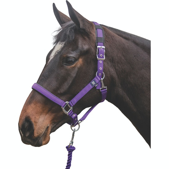 Mark Todd Deluxe Padded Headcollar and Leadropes