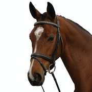 Kincade Padded Crystal Crank Flash Snaffle Bridle