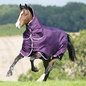 Shires Tempest Plus 200g Combo Turnout Rug - Purple White