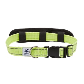 Derby House Pro Reflective Dog Collar - Silver