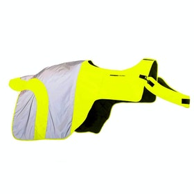 Equisafety Mercury Reflective Exercise Sheet - Yellow