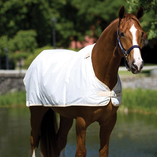 Horseware Waterproof Liner Under Rug