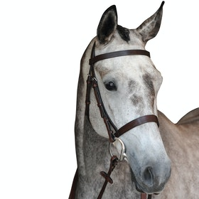 Collegiate Hunt Cavesson IV Snaffle Bridle - Brown