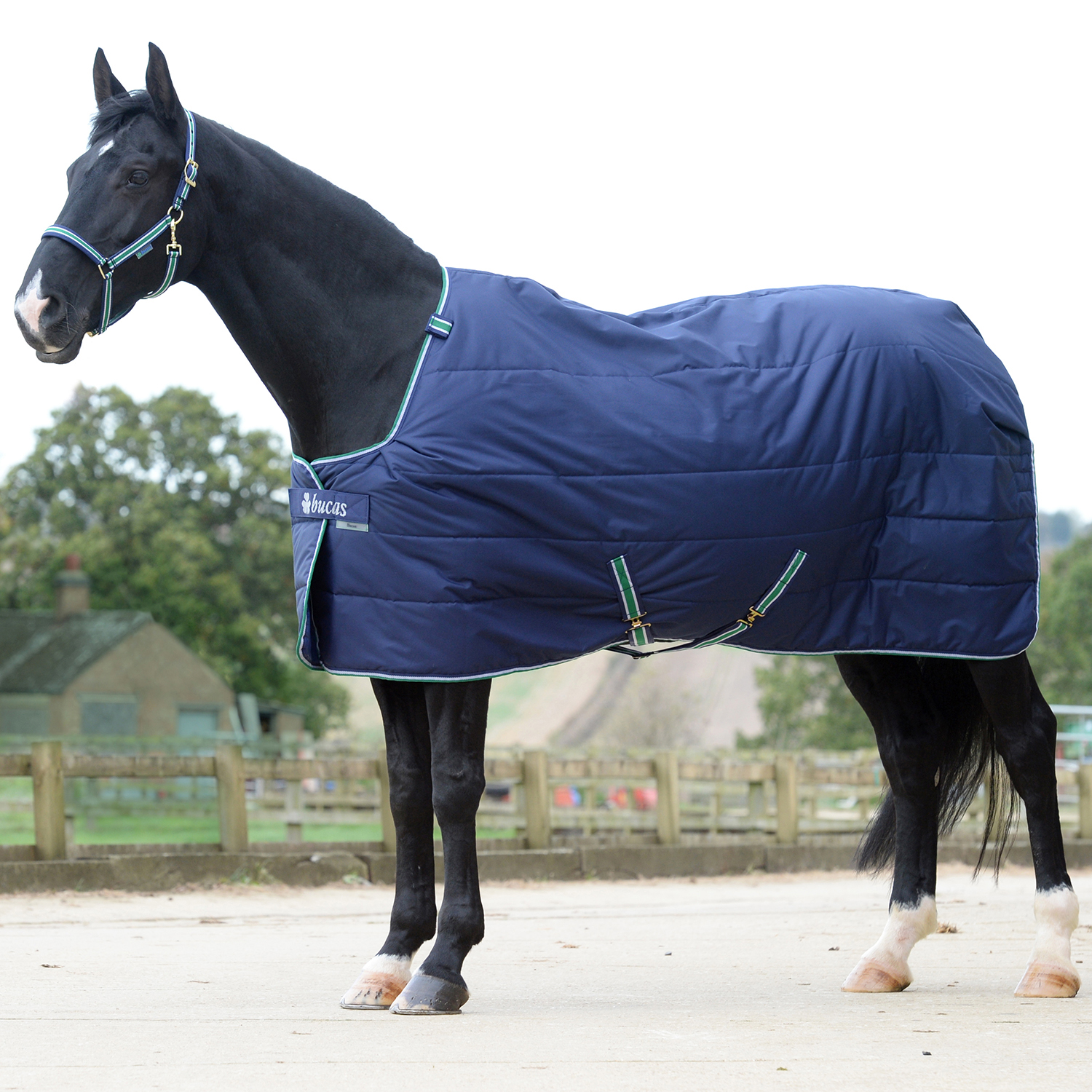 Bucas Quilt 300 Stay Dry Uni Horse