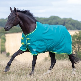 Shires Tempest Original 50 Turnout Rug - Green Lime