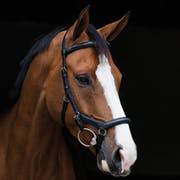 Rambo Micklem Deluxe Competition English Leather Snaffle Bridle