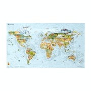 Awesome Maps World Surf Map Surf Accessory