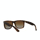 Ray-Ban Justin Mens Sunglasses
