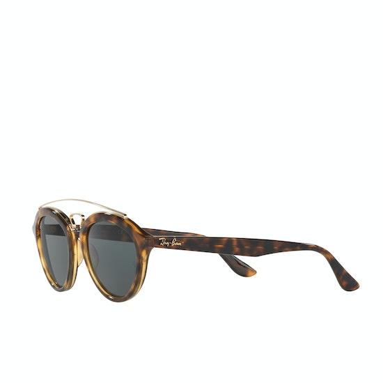 Ray-Ban RB4257 Sunglasses