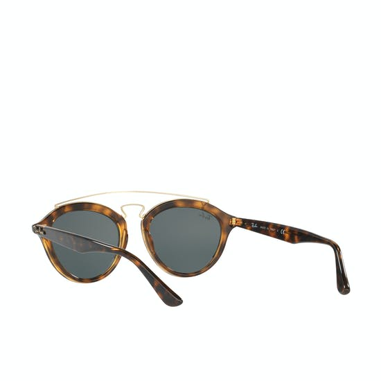 Ray-Ban RB4257 Sunglasses