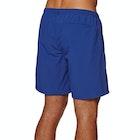 DC Lite Way Walk Shorts
