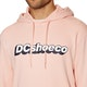 DC Artifunction Pullover Hoody