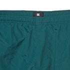DC Lite Way Walk Shorts