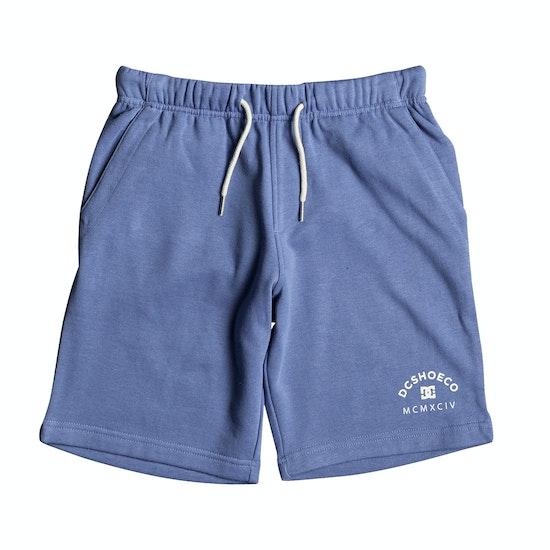 DC Rebel Boys Shorts