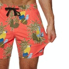 Banks Macaw Boardshorts