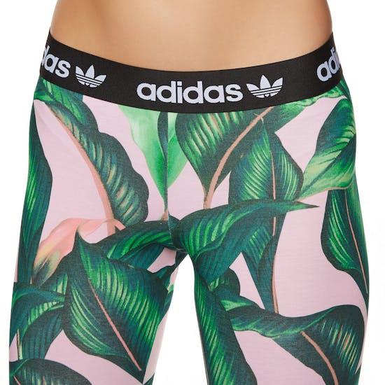 Adidas Originals Tight Damen Leggings