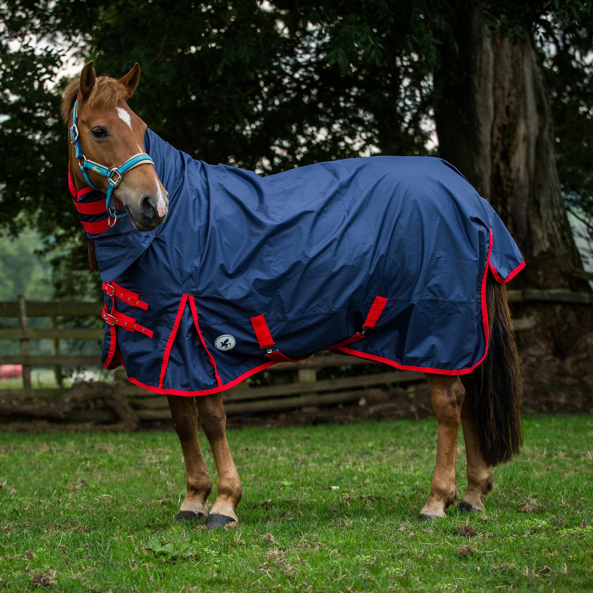 Clic Lightweight Combo Uni Horse