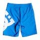DC Lanai 17 Jungen Boardshorts