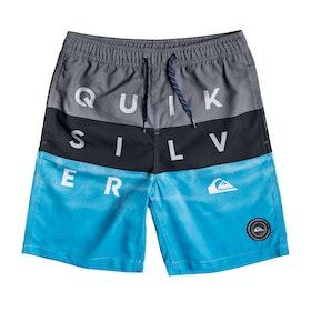 Quiksilver Word Block 15in Boys Swim Shorts - Iron Gate