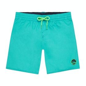 Shorts de natación Boys O'Neill Vert - Ceramic Blue