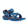Delmar Blue