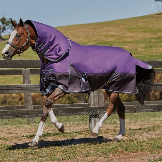 Weatherbeeta Comfitec Plus Dynamic Detach A Neck Lite Turnout Rug