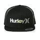 Hurley One & Only Gradient Cap