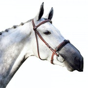 QHP Anti-fly Nose Protection Fly Mask