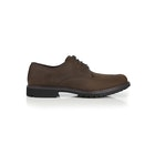 Dress Shoes Timberland Stormbuck Plain Toe Oxford
