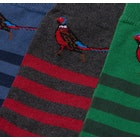 Barbour Pheasant Stripe 3 Pack Gift Set Mens Fashion Socks