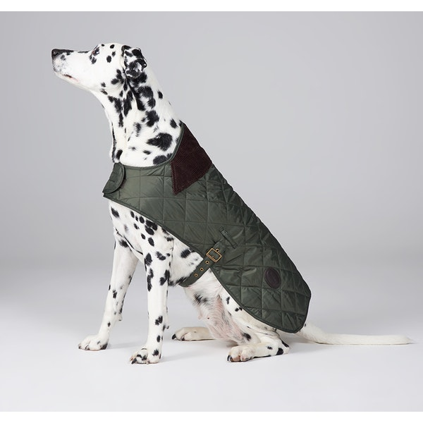 Barbour Quilted Dog Jacket