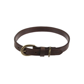 Country Attire Apollo Dog Collar - Brown