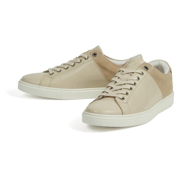 Barbour Catlina Cupsole Women's Shoes