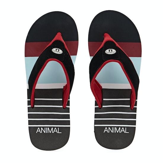 Animal Jekyl Swim Sandalen
