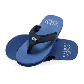 Animal Bazil Sandals - Lethal Blue