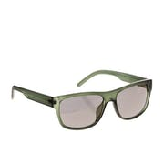 Animal Daze Sunglasses