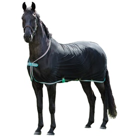 Amigo Net Cooler Rug - Black Teal Dark Cherry